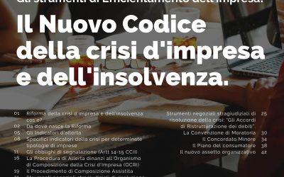 Il nuovo codice della Crisi dell'Impresa e dell'Insolvenza